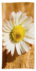Simple Camomile  In Sunlight Hand Towel