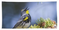Singing Audubon's Warbler Bath Towel
