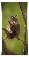 Singing Marsh Wren Hand Towel