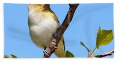 Singing Red-eyed Vireo Bath Towel
