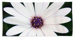 Single White Daisy Macro Hand Towel