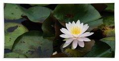 Single White Pristine Lotus Lily Hand Towel