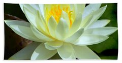 Single Yellow Water Lily Hand Towel by Kathleen Stephens