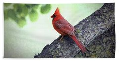 Sir Cardinal Bath Towel
