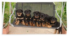 Six Rottweiler Puppies Lined Up On A Swing Hand Towel by Tracey Harrington-Simpson
