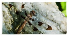 Six Spotted Dragonfly Bath Towel