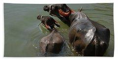 Skc 5603 The Coolest Way Bath Towel by Sunil Kapadia