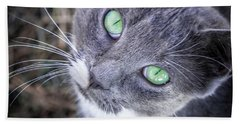Skitty Green Eyes Hand Towel by Cheryl McClure