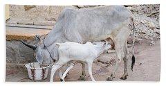 Skn 1654 Feeding Time Hand Towel by Sunil Kapadia