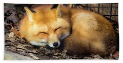 Sleeping Fox Hand Towel