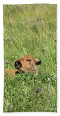 Hand Towel featuring the photograph Sleepy Calf by Alyce Taylor