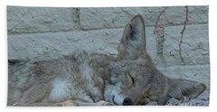 Bath Towel featuring the photograph Sleepy Li'l Coyote by Anne Rodkin