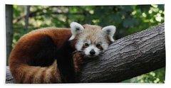 Sleepy Red Panda Hand Towel