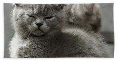 Slumbering Cat Bath Towel by Evgeniy Lankin
