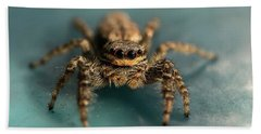Small Jumping Spider Hand Towel