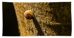 Small Snail On The Tree Hand Towel