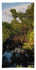 Hand Towel featuring the photograph Small Waterway In Vitolo Preserve, Hutchinson Isl  -29151 by John Bald