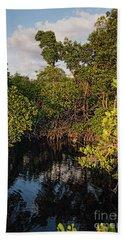 Small Waterway In Vitolo Preserve, Hutchinson Isl  -29151 Bath Towel by John Bald