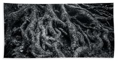 Bath Towel featuring the photograph Smugglers' Notch Vermont Trees And Roots 2 by James Aiken