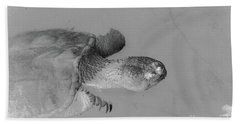 Snapping Turtle Black And White Hand Towel