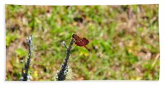 Hand Towel featuring the photograph Shimmering Saddlebags by Al Powell Photography USA