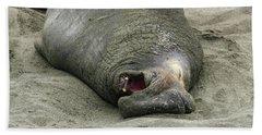 Snoring Elephant Seal Bath Towel
