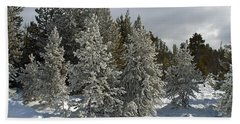 Snow And Ice Covered Evergreens At Sunset Lake  Bath Towel