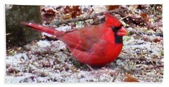 Snow Cardinal  Hand Towel