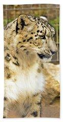 Bath Towel featuring the photograph Snow Leopard 1 by Ayasha Loya