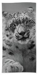 Bath Towel featuring the photograph Snow Leopard  Bw by Sandy Keeton