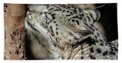 Snow Leopard Hand Towel by Lisa L Silva