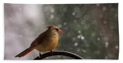 Bath Towel featuring the photograph Snow Showers Female Northern Cardinal by Terry DeLuco