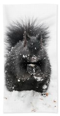 Snow Squirrel Bath Towel