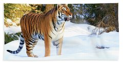 Snow Tiger Hand Towel by Steve McKinzie