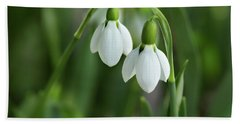 Hand Towel featuring the photograph Snowdrops by Mary Jo Allen