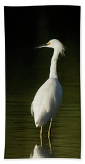 Snowy Egret Hand Towel by CR Courson