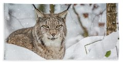 Snowy Lynx Bath Towel