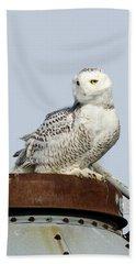 Snowy Owl II Bath Towel