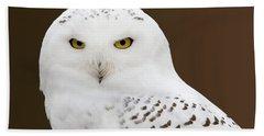 Snowy Owl Hand Towel by Steve Stuller