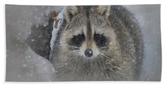 Snowy Raccoon Hand Towel