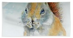 Snowy Red Squirrel Hand Towel by William Reed