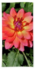 Soaking In The Sun Soaking In The Sun Dahlia Flower Hand Towel