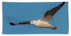 Soaring Gull Bath Towel