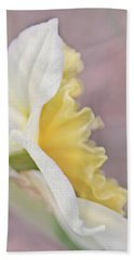 Hand Towel featuring the photograph Softness Of A Daffodil Flower by Jennie Marie Schell