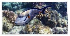 Sohal Surgeonfish 5 Bath Towel