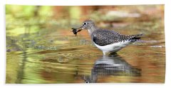 Solitary Sandpiper With Belostomatide Bath Towel