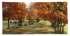 Solitude - Autumn In Pishiobury Park Bath Towel