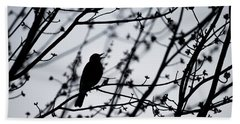 Hand Towel featuring the photograph Song Bird Silhouette by Terry DeLuco