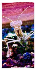 Sonoran Desert Ground Mantis Bath Towel