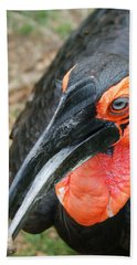 Southern Ground Hornbill Hand Towel